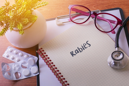 Stethoscope on note book with Rabies words as medical concept Stock Photo