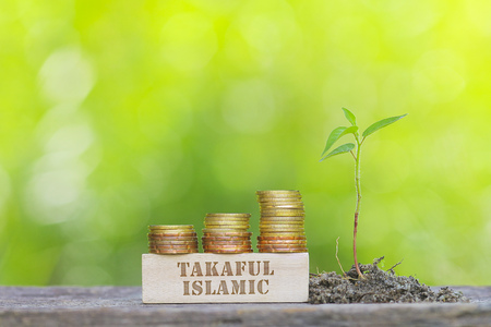 TAKAFUL ISLAMIC Golden coin stacked with wooden bar on shallow DOF green background Stock Photo