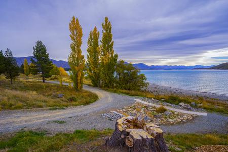 Landschapslandschap van Nieuw Zeeland tijdens bewolkte dag