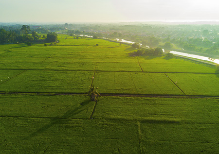 arial view: arial view of green paddy field on east asia during sunrise Stock Photo