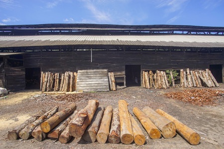 Stacked wood at traditional charcoal factory Editorial