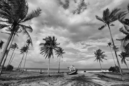 Black and white scenery of fisherman village with coconut tree, boat and beach Stock Photo
