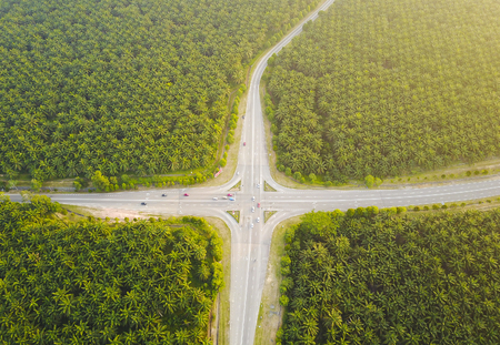 Busy Road junction in the middle of green palm plantation, view from aerial Stock Photo