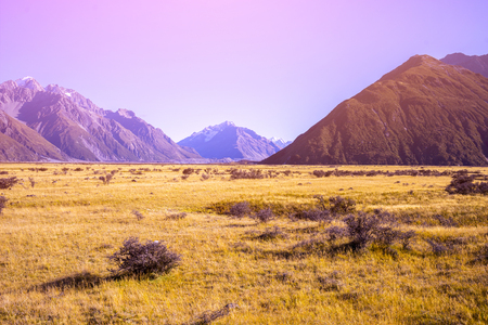 Mount Tasman Valleys , Aoraki Mt Cook national park Southern Alps mountain South Island New Zealand.