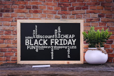 Black Friday word on blackboard with green plant