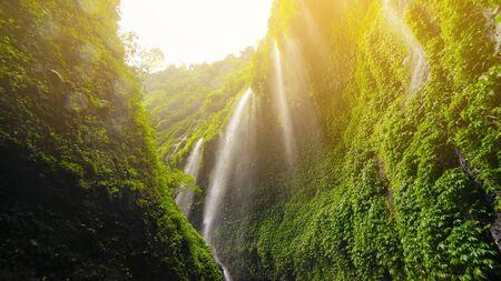 Majestic view of Madakaripura waterfall