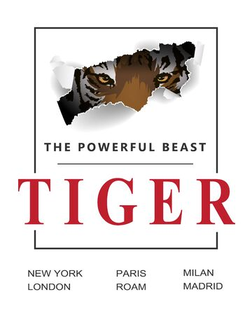 The powerful beast slogan ripped off with tiger. Claw scratches vector illustration, t-shirt design. wild hunt slogan with tiger and claw
