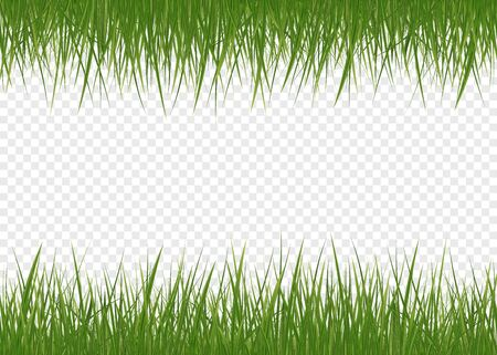 Vector realistic isolated green grass borders for decoration. Isolated plant stems for front plan nature illustration. Gradient mesh tool.