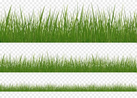 Realistic Grass Borders, Vector Illustration. Set of realistic vector elements of nature for design illustrations.