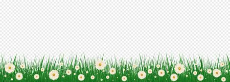 Bright realistic pattern of green grass and spring flowers for decorating Easter cards. Grass And Flowers Border Set With Gradient Mesh, Vector Illustration