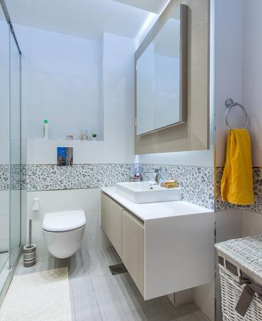 ensuite: Modern bathroom interior