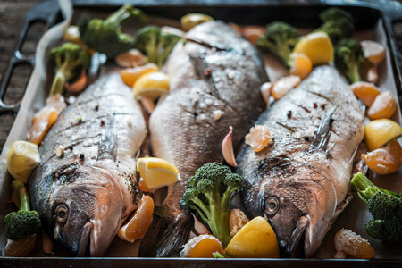 gilt head: Sea gilt-head bream fish on baking sheet Stock Photo