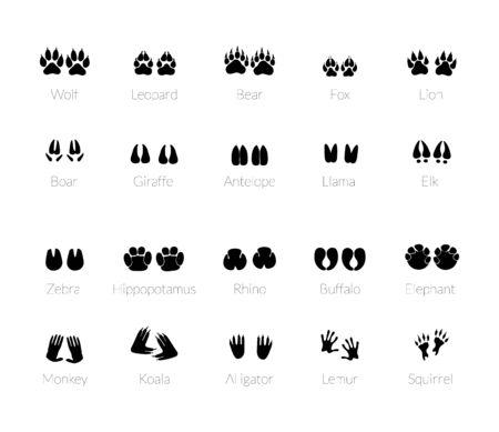 Tierspuren, Pfotenabdrücke. Set von verschiedenen Tieren und Raubtieren Fußabdrücke und Spuren. Katze, Löwe, Leopard, Tiger, Fuchs, Wolf, Hund, Bär. Vektor