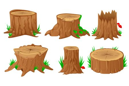 Collection of tree stumps, isolated on white background. Vector illustration in flat style.