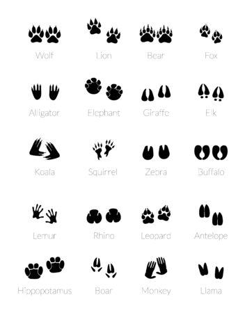 Spuren von Tieren. Silhouette von Tierbeinen. Wildtierpfotenpfad oder Trail-Fußabdruck.
