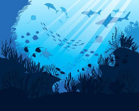 Sea underwater. Ocean bottom with seaweeds. Marine scene
