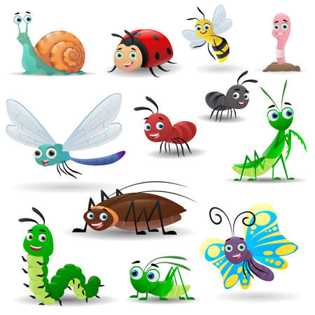 Cartoon collection of cute insects. Bee, worm, snail, butterfly, caterpillar, ladybug, praying mantis, dragonfly, cockroach, ant, grasshopper. Vector illustrations