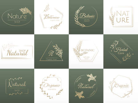 Set natural branding, template for design and natural cosmetics. Vintage vector and luxury signs for beauty. Vector illustration Vector Illustration