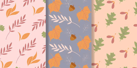 Autumn pattern collection. Texture for wallpaper, web page background, wrapping paper. Autumn design and conception. Vector illustration