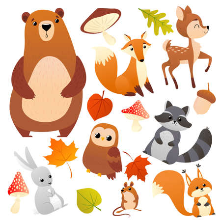 Wild forest animals pattern and leavs. Fox, bear, moose, raccoon, squirrel, deer, ferret, fly agaric, acorn or mushrooms and leaves. Set of woodland animals isolated on white background. Vector illustration