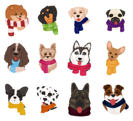 Cute dogs in knitted scarves. Collection of funny dogs of different breeds. Merry Christmas and Happy New Year 2021. Cute doodle corgi for christmas. Vector illustration Vektorové ilustrace