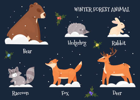 Forest Christmas 2021 A set of cute animals: bear, fox, wolf, deer, hare, hedgehog, placed on a dark blue background and signed Vector illustration
