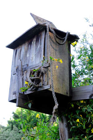 Vintage bird house photo
