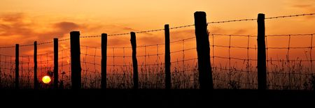 wire fence: the sun setting over a barbwire fence