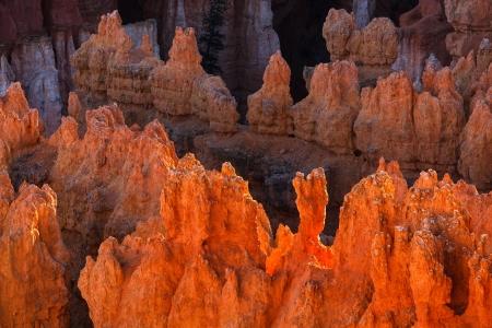 hoodoos: Bryce Canyon National Park Hoodoos In Afternoon Light
