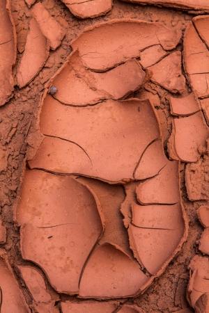 Dried Mud Pattern In Utah Desert Canyon