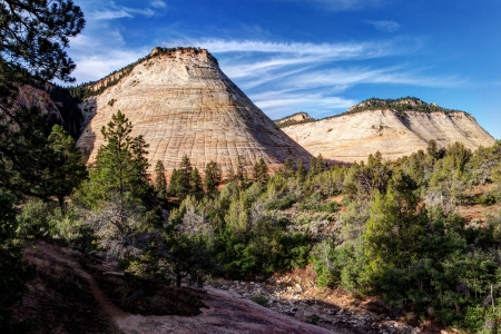 Checkerboard Mesa Zion National Park Utah