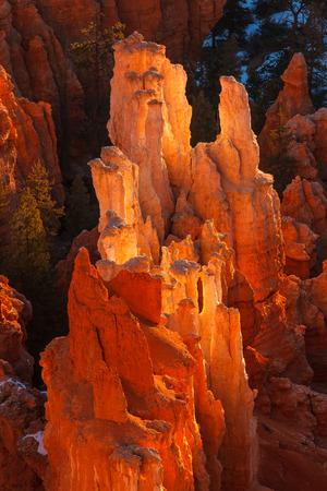 hoodoos: Bryce Canyon National Park Hoodoos Sunrise Utah Stock Photo