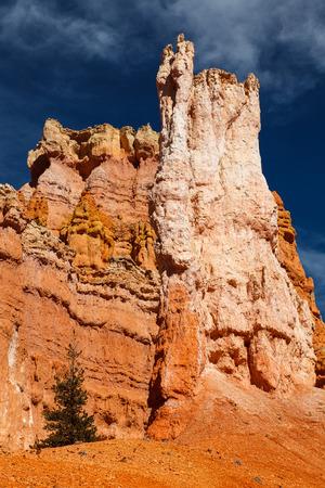 hoodoos: Bryce Canyon National Park Hoodoos in Queens Garden Trail Utah