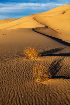 Eureka Valley Sand DunesDeath Valley National ParkCalifornia