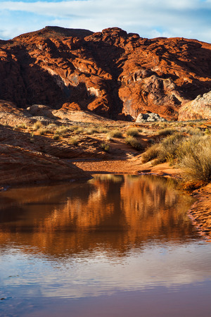 Mojave Desert Water in Valley Of Fire Nevada