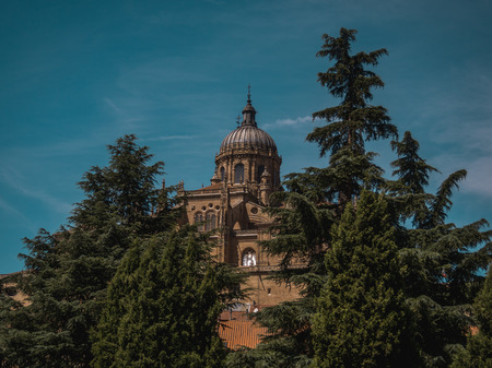 Cathedral of Salamanca between trees Stock Photo