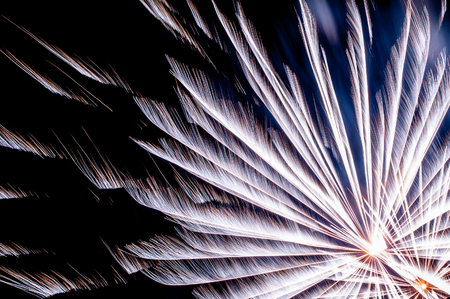 sparkling firework on night seen from a park and trees silhouettes, traditional event in Castello Sforzesco, Milan, Italy