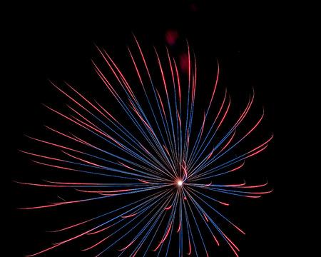 夜の公園や木々 のシルエットから見たスフォルツァ、ミラノ、イタリアの伝統的なイベントに輝く花火