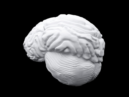 3d brain model on the nlack background photo