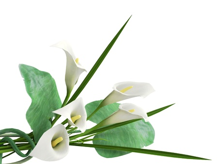 3D callas arrangement photo