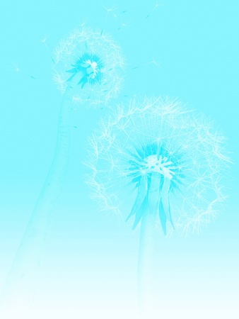3d dandelions Stock Photo