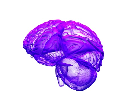 3d abstract brain on the white background photo