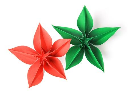 flores exoticas: flor exótica origami en un fondo blanco