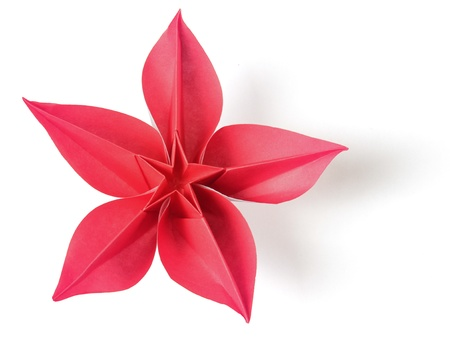 flower exotic origami on a white background