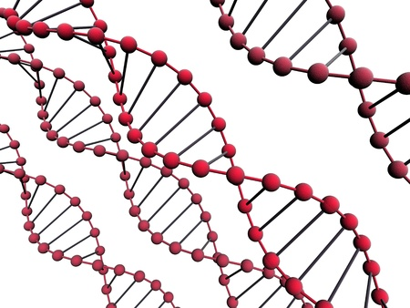 nucleic acid: 3d  isolated dna on the white background