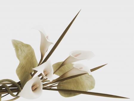 callas: 3d callas arrangement in vintage stile
