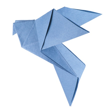 isolated origami dove on the white background photo