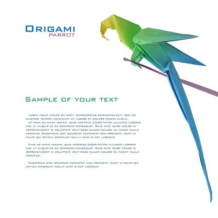 uccello origami: pappagallo origami su un ramo di decorazione d'angolo angolo Archivio Fotografico