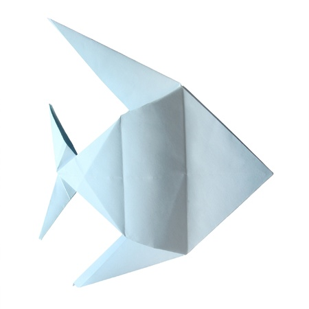 origami blue tropical fish on the white background Stock Photo - 15800434