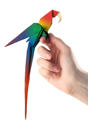 origami macaw parrot sitting on the hand